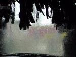 洗車ブラシ